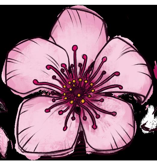 CBiM Blossom Favicon
